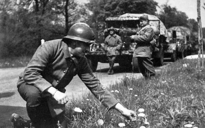 Западный фронт в 1939-1940 годах - странная война