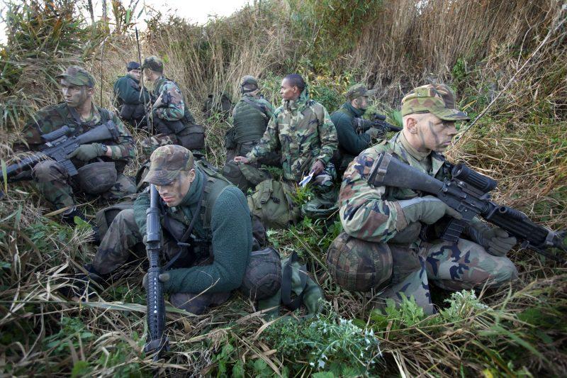 Сухопутные войска Нидерландов