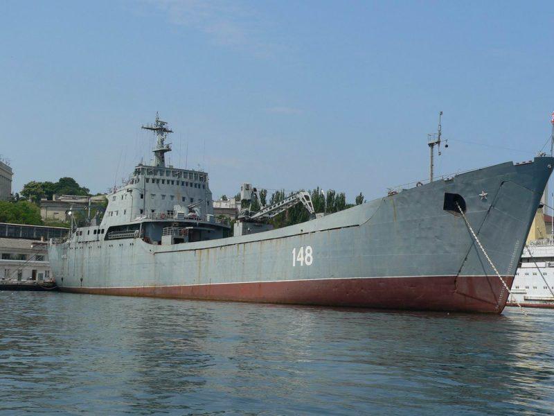Корабли проекта 1171 «Тапир»