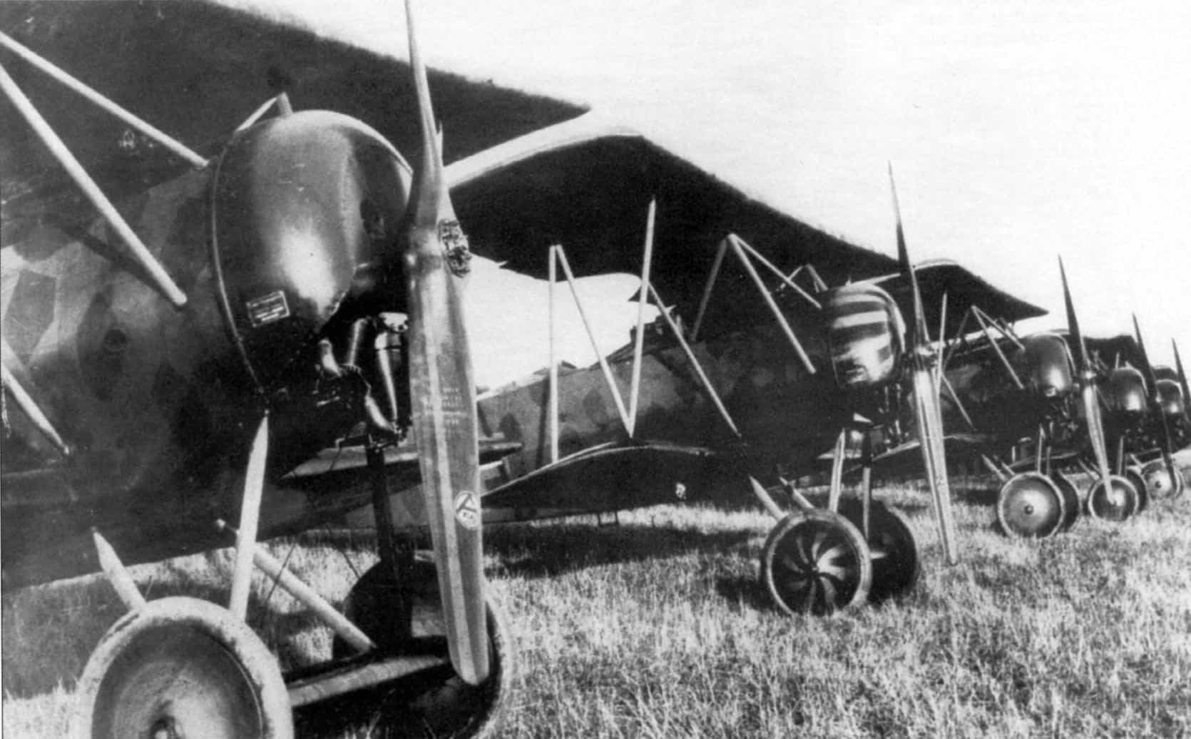 Германский истребитель Fokker D.VI