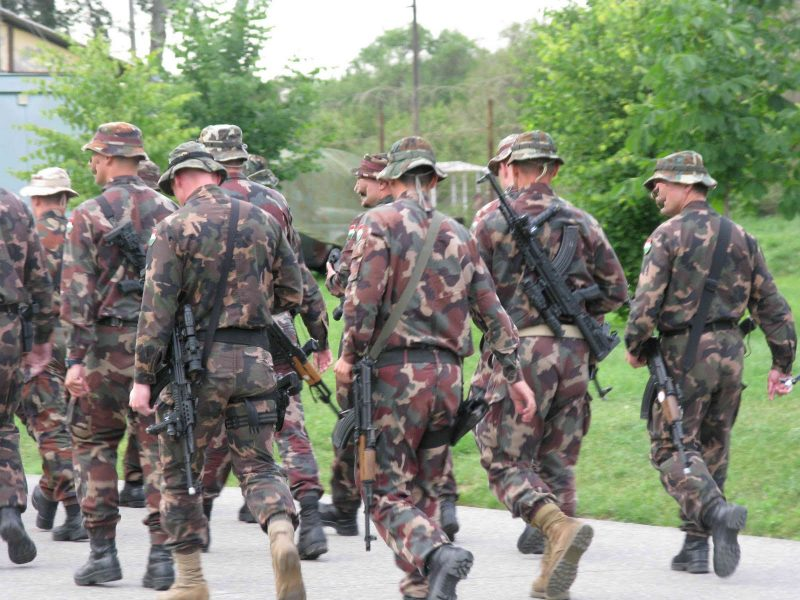 Вооруженные силы Венгрии