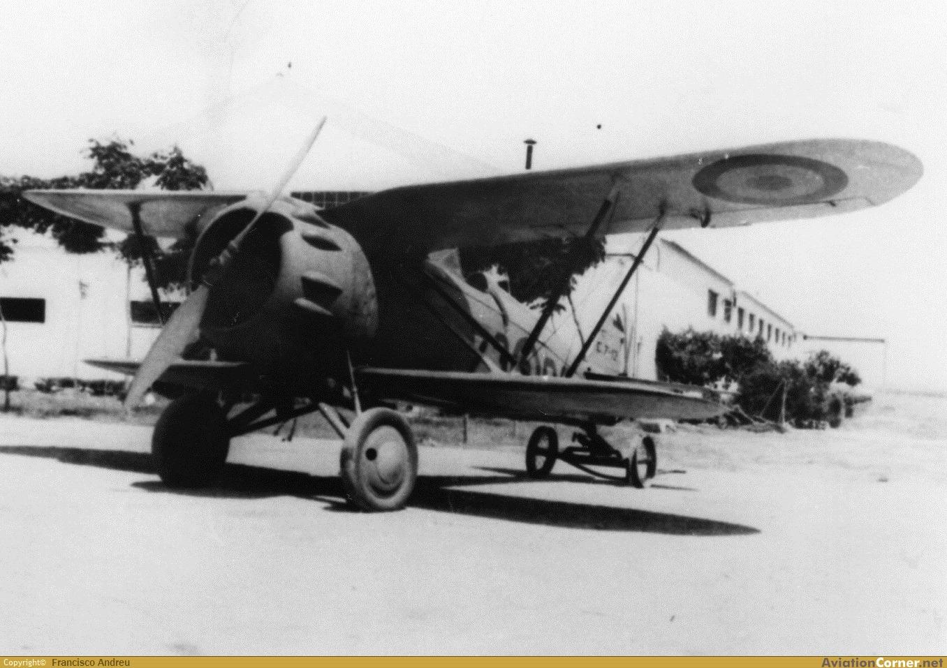 Итальянский учебно-тренировочный истребитель I.M.A.M. Ro.41
