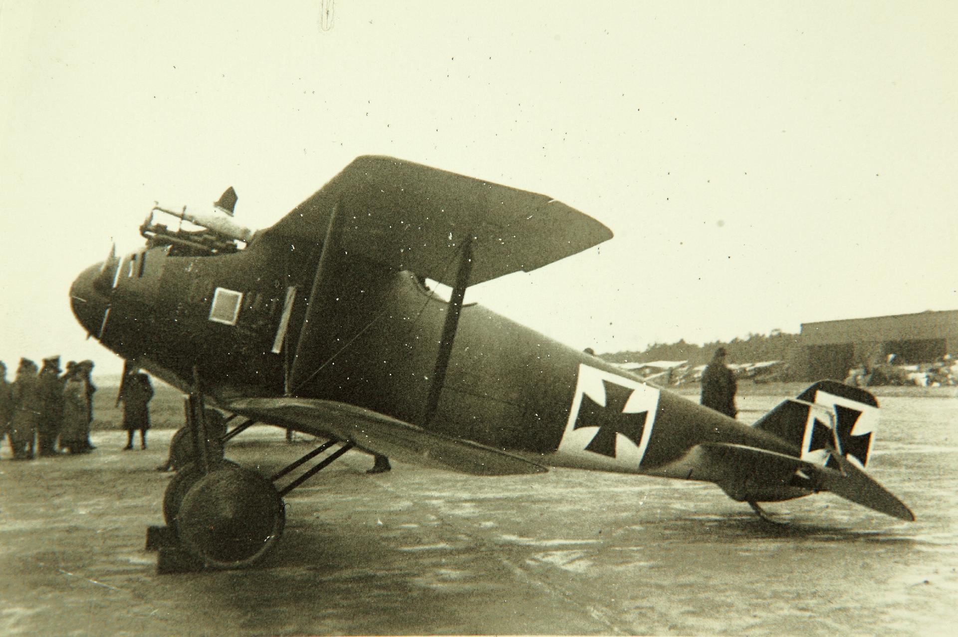 """Германский истребитель LFG Roland D.I """"Haifisch"""""""