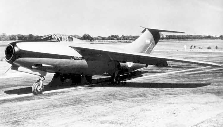 """Немецкий истребитель FMA IAe 33 """"Pulgue II"""""""