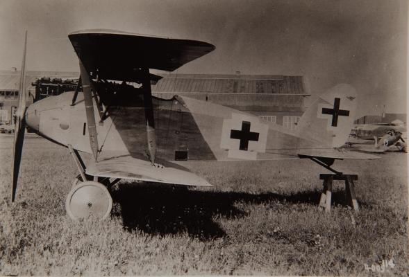 Германский истребитель Albatros D.XII