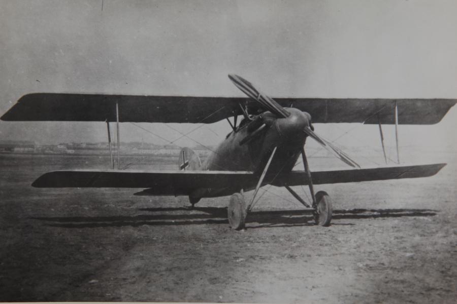 Германский истребитель Daimler D.I