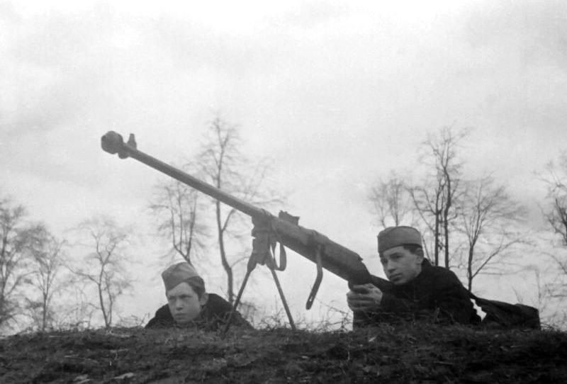 Противотанковая винтовка Шолохова обр. 1939 г.
