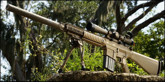 Снайперские винтовки «Armalite» и «Knight's» (США)