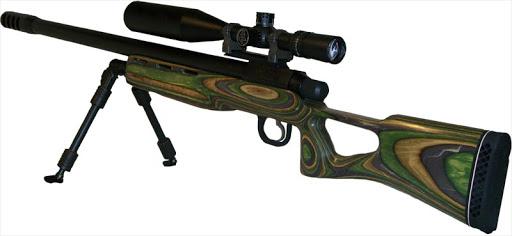 Крупнокалиберные винтовки «East Ridge Gun/State Arms» (США)