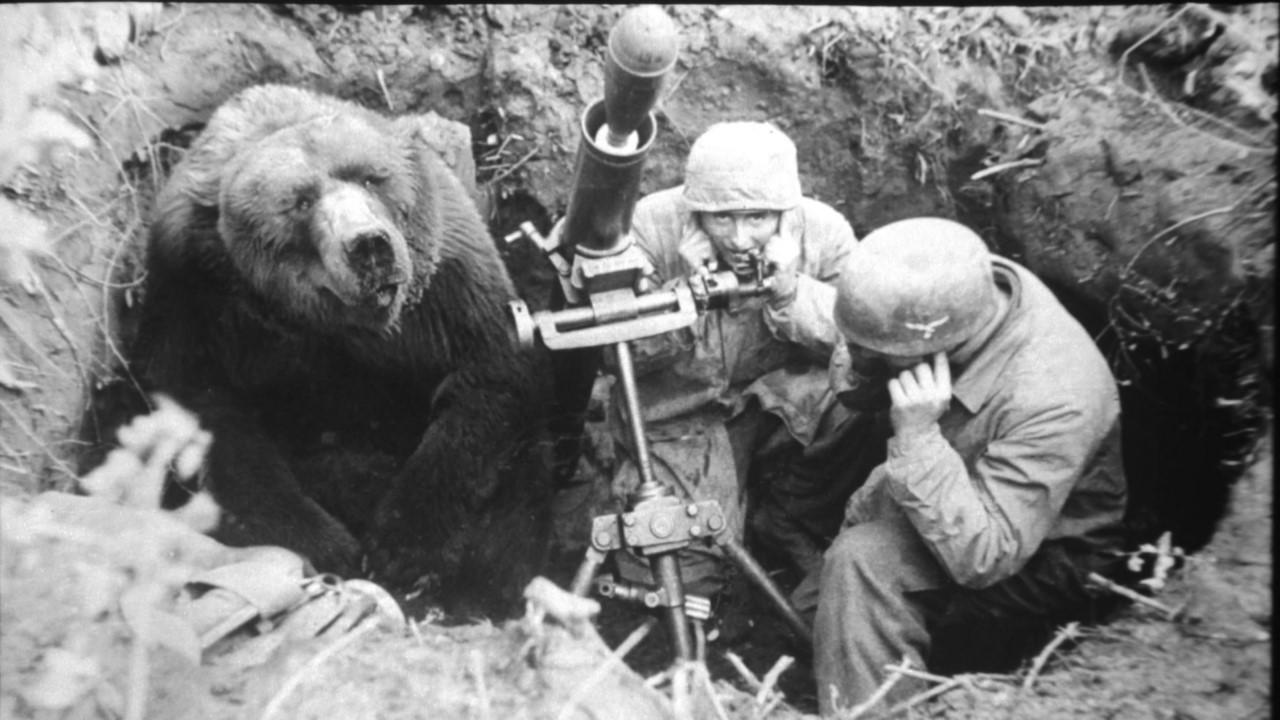 Косолапый солдат помог польской армии победить фашистов