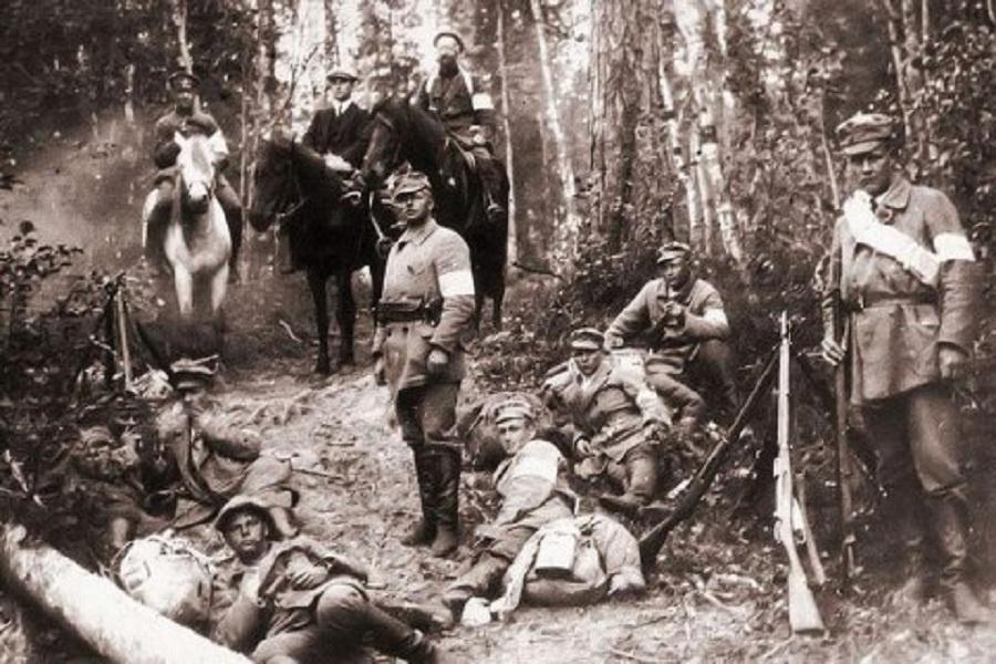 Белофинны против Красной армии